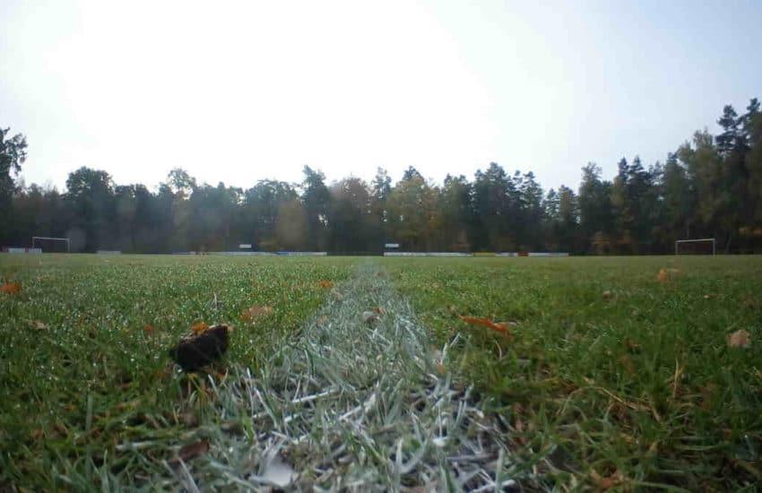 Fussball Rasen